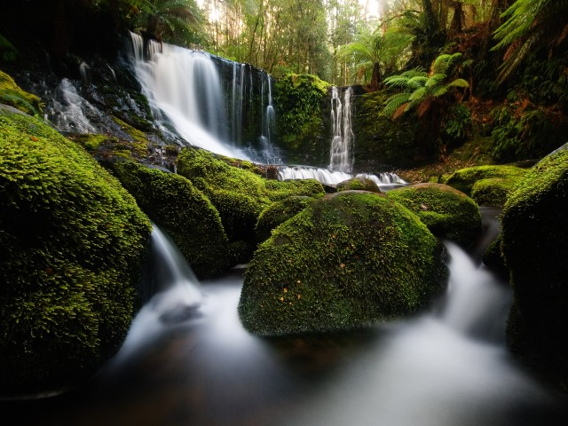 Horseshoe Falls at Mount Field National Park