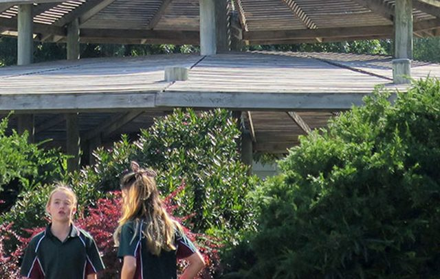Students in school quadrangle
